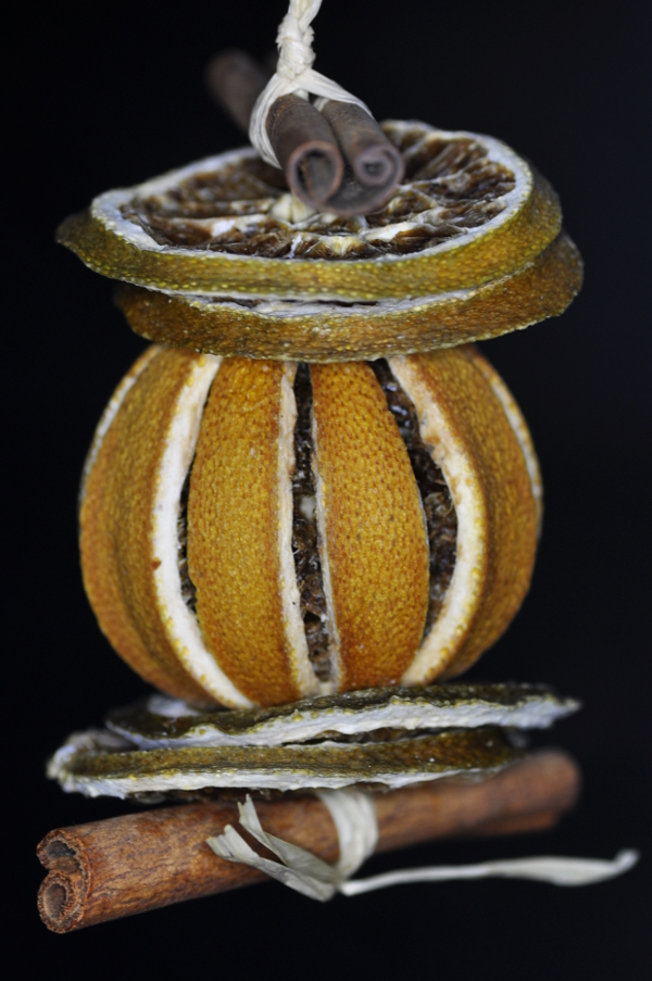 Christmas Decoration - Dried Fruit