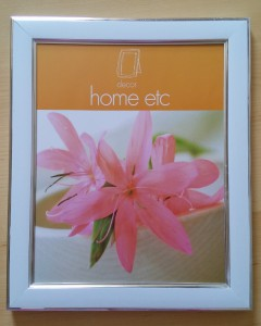 "An 8x10"" sized glass photo frame from a pound shop, to use for contact print"